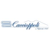 CACCIOPPOLI